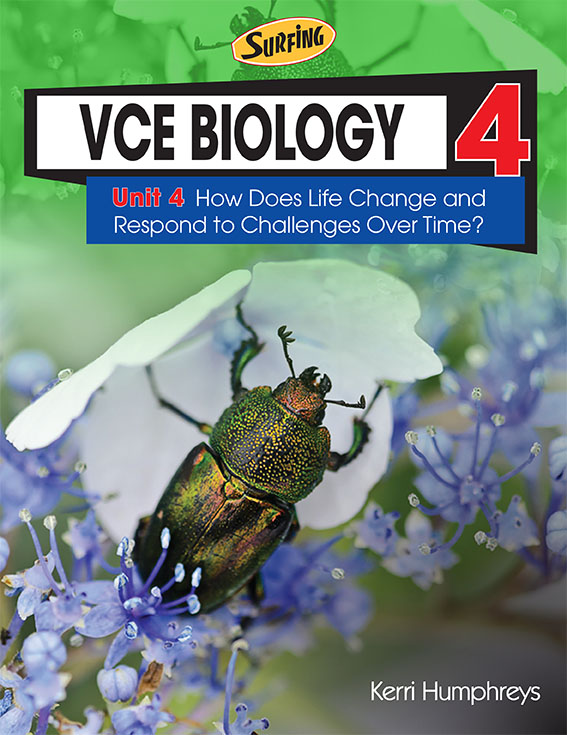 VCE Surfing Biology 4